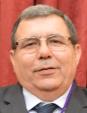 AUXILIAR DE LA DIPUTACIÓN DE MAYORDOMÍA